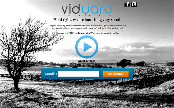 landing page video example