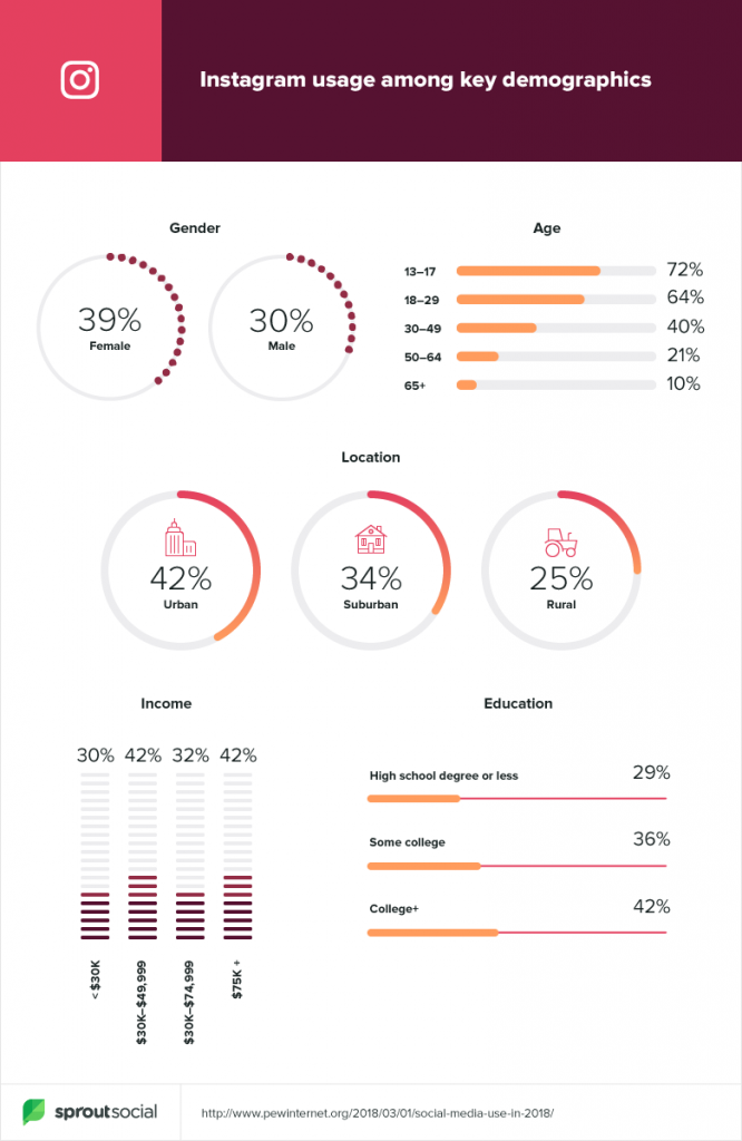 instagram usage demographics