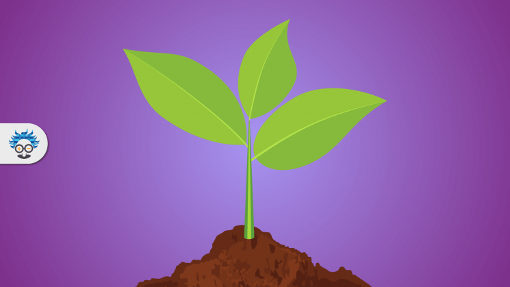 Sustainability in Experiential Marketing