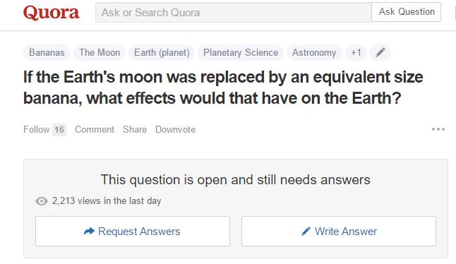 quora stupid question